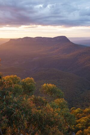 Kings Tableland in the Blue Mountains National Park, New South Wales, Australia