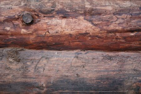 the brown wood texture with natural patterns Stock Photo - 7675062