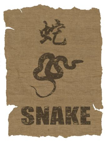 Snake Zodiac icon on texture of old canvas photo