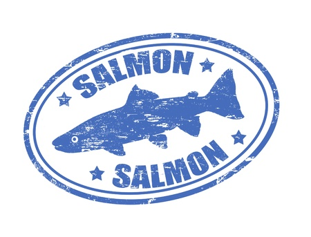 Grunge rubber stamp of a salmon fish and the word salmon written inside Vector