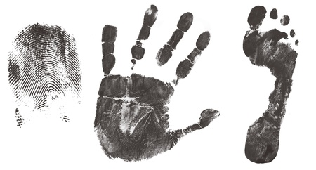 Finger, hand and feet print isolated on white, vector illustration Vector