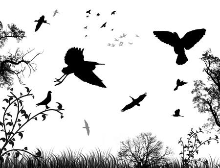 La naturaleza de fondo abstracto con las aves y los árboles, en blanco y negro, ilustración vectorial