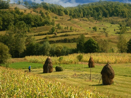 farmyard: Field with haystack on mountains meadow Stock Photo