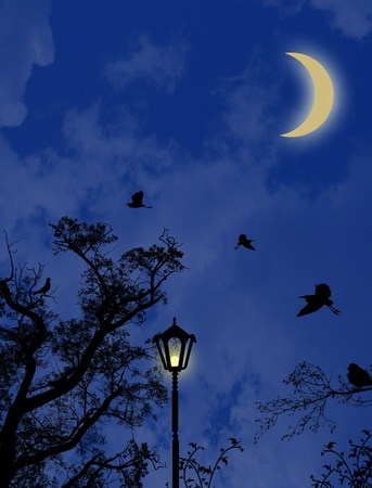 painting nature: Glowing lantern near the branches of tree on night blue sky