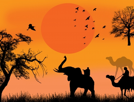 African safari theme illustration with camels and elephant on sunet, background illustration Vector