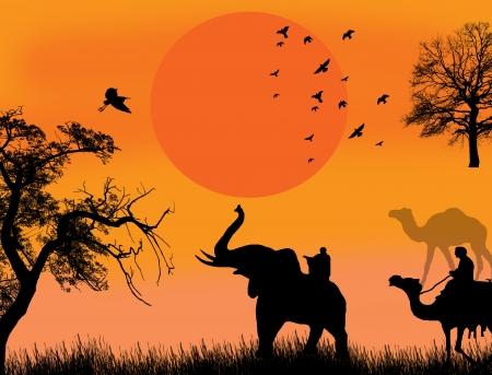 desierto del sahara: Safari africano ilustración tema con camellos y elefantes en sunet, ilustración de fondo