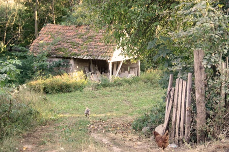 farm structures: Abandoned old house in rural area Stock Photo
