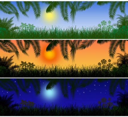 Tropical landscape banners. Day, sunset and night  Vector