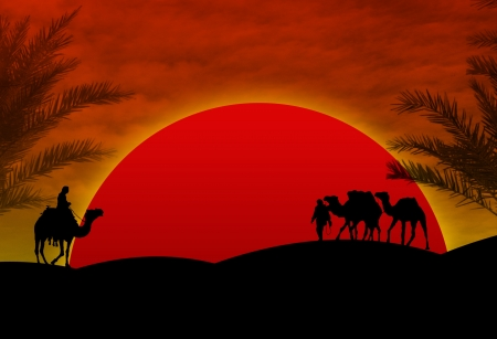 desert storm: Camels in Sahara on red sunset Illustration