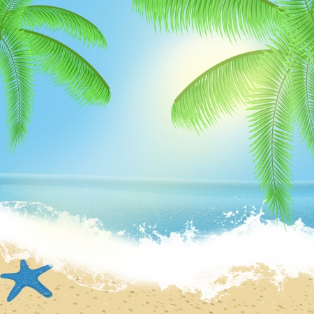 Sea beach for summer design with sea, plams and starfish, vector illustration Stock Vector - 14474408