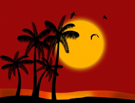 Sunset on tropical paradise with palms silhouette and birds Vector
