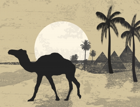 Camel and palms on grunge background of sunset in african desert Vector