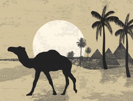 Kameel en de handpalmen op grunge achtergrond van de zonsondergang in de Afrikaanse woestijn