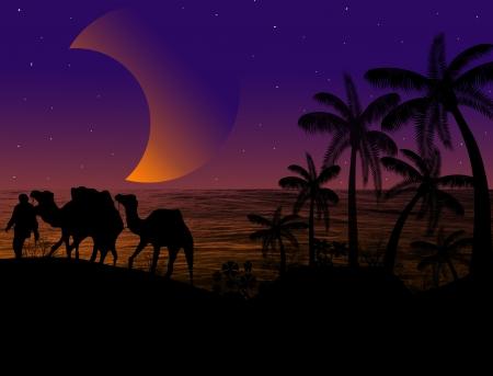 bedouin: Camel caravan in wild nature landscape at sunst, background illustration