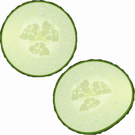 Fresh slices of cucumber on white background Stock Vector - 16626639