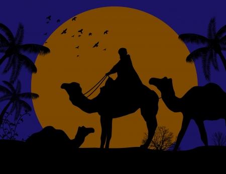 desierto del sahara: Beduino camello caravana en africa salvaje paisaje de la puesta del sol