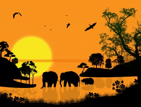 Elephants swims through the water at sunset, vector illustration Vector