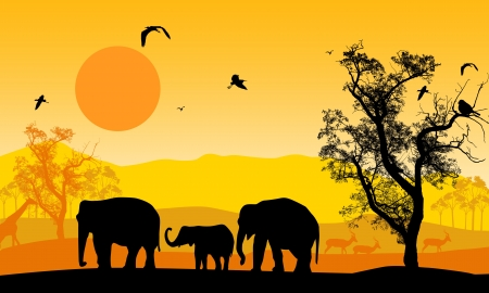 flora fauna: African wildlife at sunset, with elephants, giraffe and antelope, vector illustration Illustration