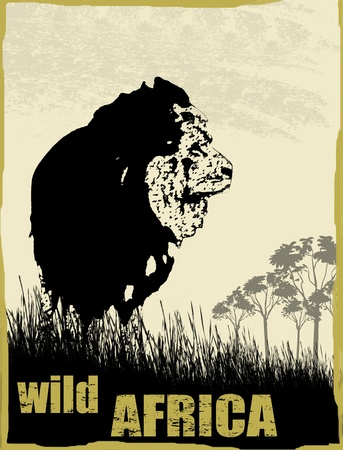 Wild africa image with lion silhouette on grunge background, vector illustration Stock Vector - 17132176