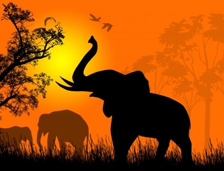Wild elephants at sunset on beautiful landscape illustration Vector