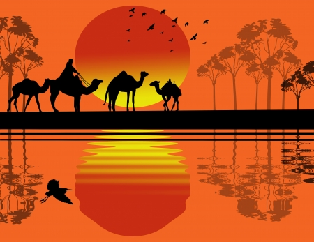 convoy: Bedouin camel caravan in wild africa landscape near water on sunset