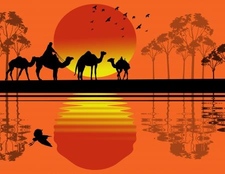 convoy: Beduino cammello camper nel paesaggio selvaggio africa in prossimit� di acqua sul tramonto Vettoriali