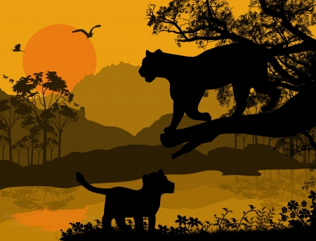 silueta tigre: Silueta vista de pantera en un árbol en el paisaje hermoso, ilustración vectorial