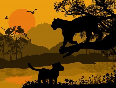 puma: Vista Silhouette di pantera su un albero in bel paesaggio, illustrazione vettoriale