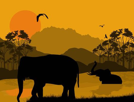 Wild elephants at sunset on beautiful landscape, vector illustration Vector