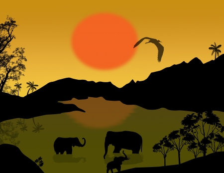 Beautiful landscape with elephants in the lake at sunset, vector illustration Stock Vector - 17274761