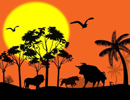 south african birds: Wild animals in beautiful landscape at sunset, illustration