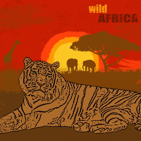 Sunset landscape vector: Lion on grunge african landscape on sunset, vector illustration Hình minh hoạ