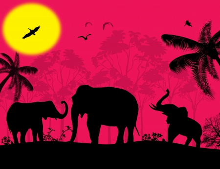 African wildlife at pink sunset with elephants Vector
