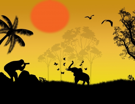 Silhouette of photographer at sunset shoot a baby elephant at jungle landscape Stock Vector - 17590528