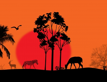 Africa / safari - silhouettes of wild animals on beautiful landscape, illustration Stock Vector - 17590535