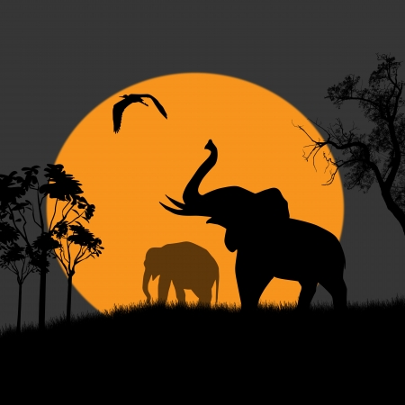 Silhouette view of elephants at night, wildlife illustration Stock Vector - 17590594