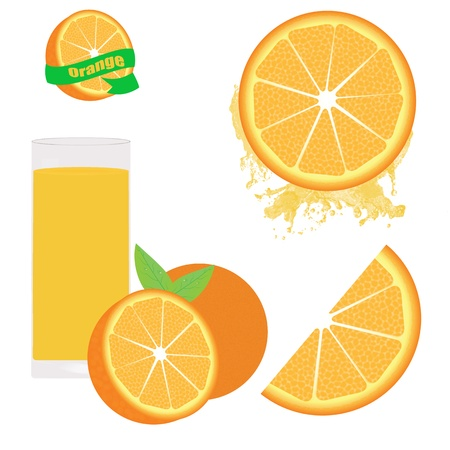 Orange set on white background Stock Vector - 17697453