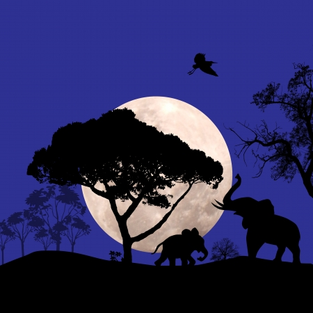 African wildlife at blue sunset with elephants, vector illustration Vector