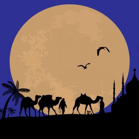 Bedouin camel caravan in wild africa landscape on sunset Stock Vector - 18002489