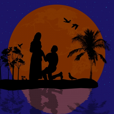 woo: A young man  kneel and woo the girl in beautiful landscape silhouette