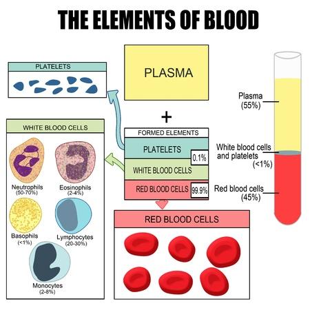 Les éléments du sang (utile pour l'éducation dans les écoles et les cliniques)