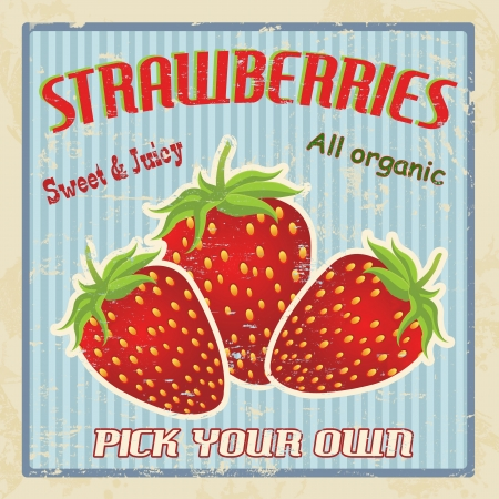 imperfections: Strawberries vintage grunge retro poster, vector illustration