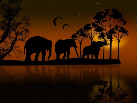 Elephants silhouette in africa near water at beautiful sunset Stock Vector - 19987287