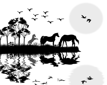 horseback riding: Wild horses on beautiful  landscape near water background illustration