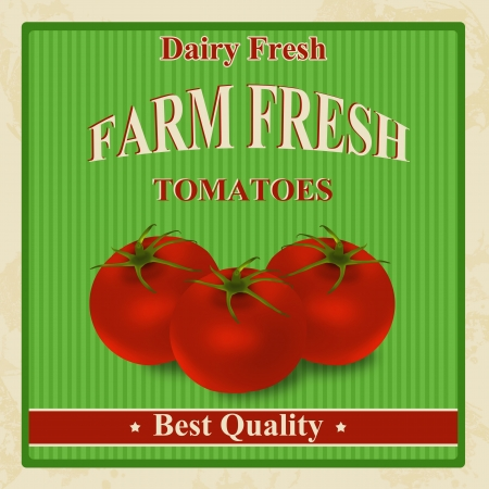 old fashioned vegetables: Vintage farm fresh organic tomatoes poster, illustration
