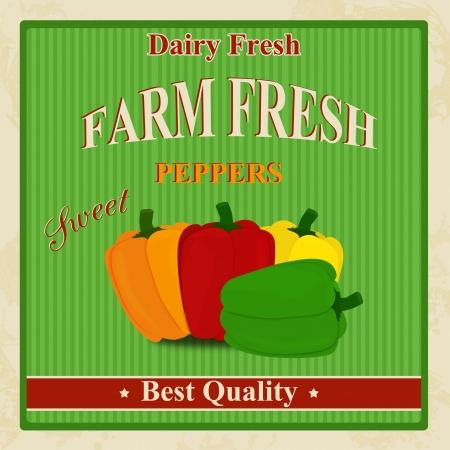 old fashioned vegetables: Vintage farm fresh organic peppers poster, illustration
