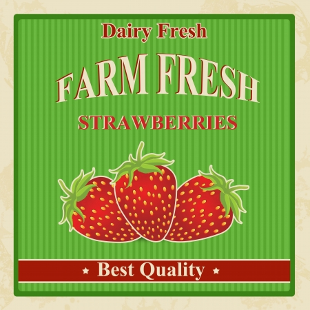 old fashioned vegetables: Vintage farm fresh organic strawberries poster, illustration Illustration