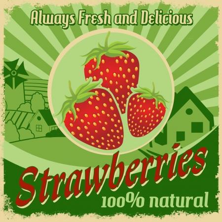 frutilla: Plantilla del cartel del vintage para las fresas granja, la ilustración Vectores