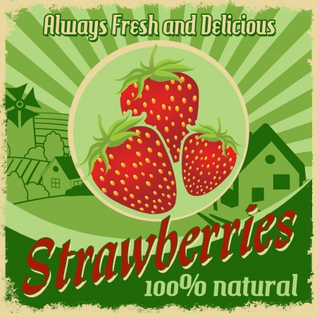 Vintage poster template for strawberries farm, illustration Stock Vector - 20854302