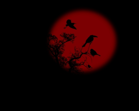 Night raven on a tree with red full moon, vector illustration Illustration